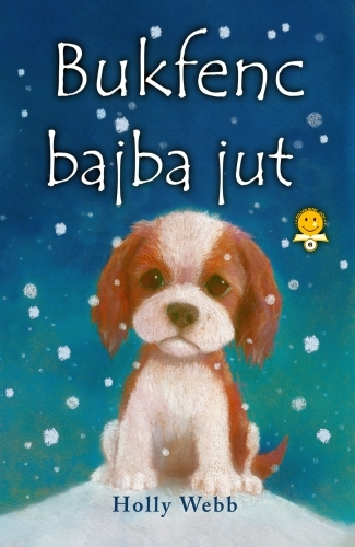 Holly Webb: Bukfenc bajba jut