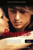 Tammara Webber: Breakable - Törékeny (A szív körvonalai 2.)