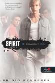 Brigid Kemmerer: Spirit - Szellem (Elementálok 3.)