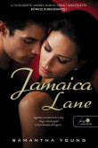 Samantha Young: Jamaica Lane (Dublin Street 3.)