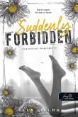 Ella Fields: Suddenly Forbidden - Hozzáférés megtagadva (Gray Springs Egyetem 1.)